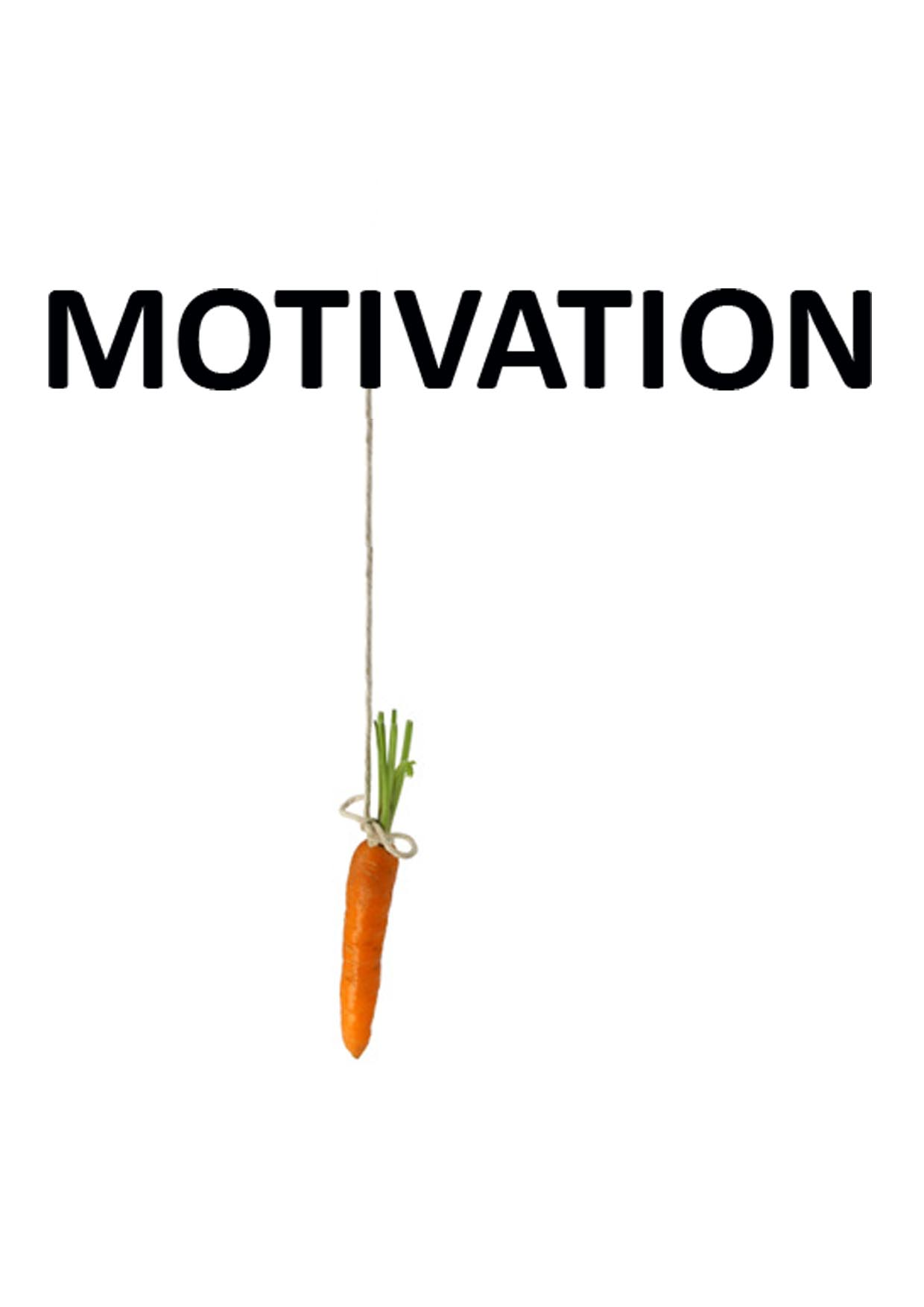 Bildresultat för motivation