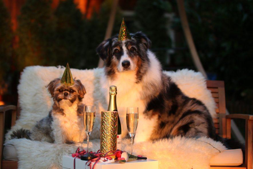 Istället för att ge nya nyårslöften som bryts