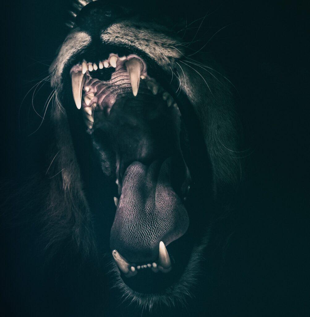 Vad hjälper rädslan oss med?